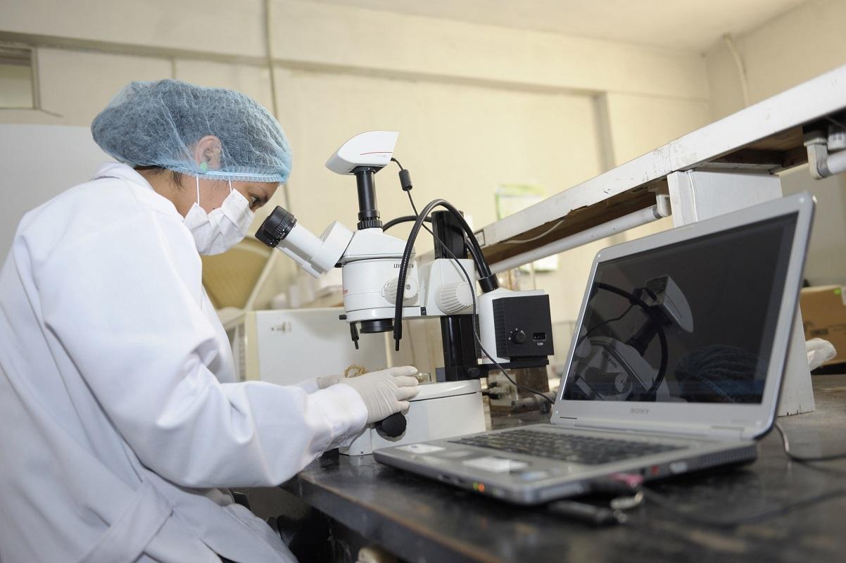 Prociencia convoca a concurso para formación de investigadores postdoctorales, inscripciones hasta el 21 de setiembre.