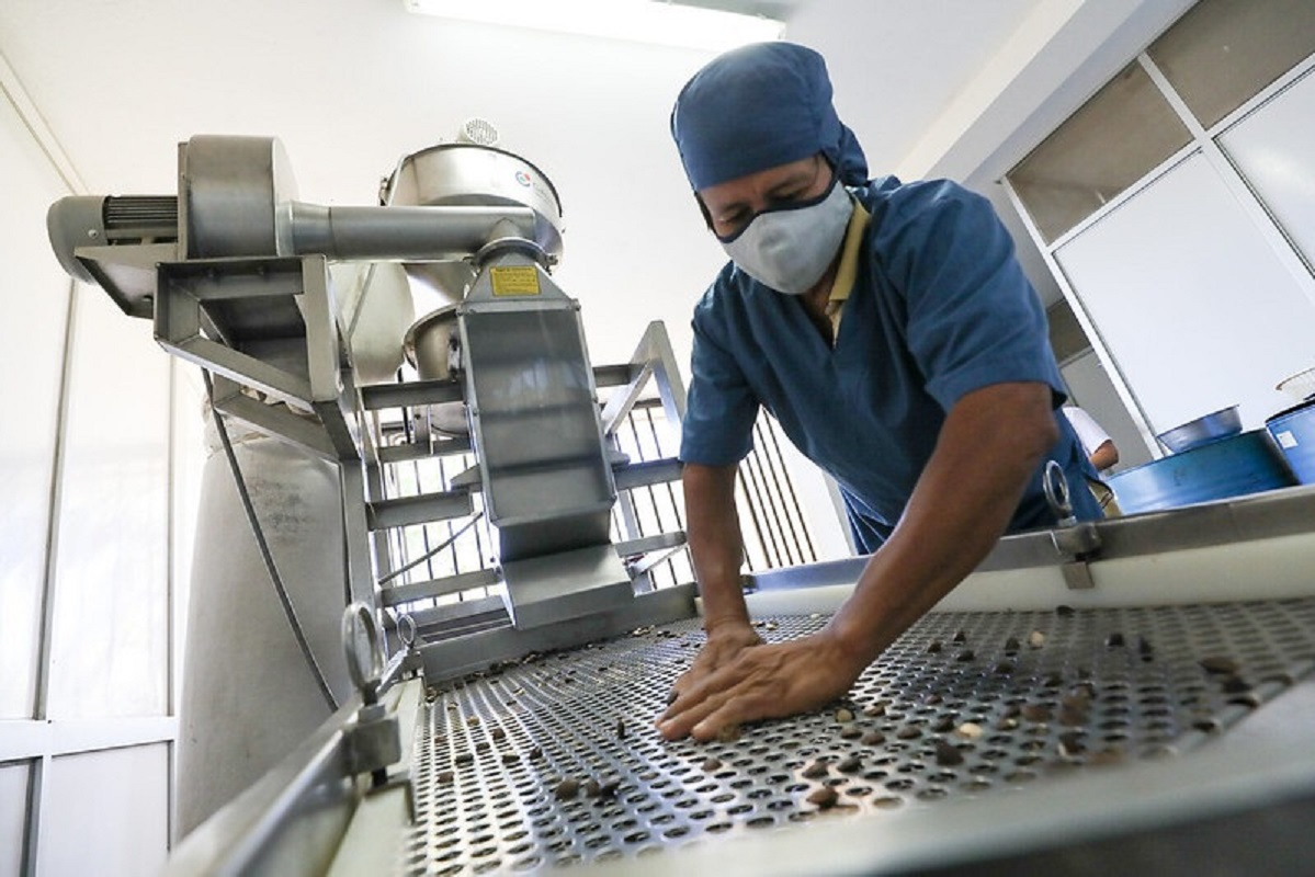 El primer gremio exportador ADEX indicó que empleos asociados a la exportaciones aumentaron en enero y julio de 2021.